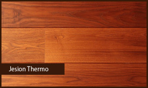Jesion Thermo